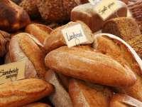Amikor a mindennapi kenyerünk ellenséggé válik - Coeliákia vagy gluténallergia vagy nem-coeliákiás gluténérzékenység?